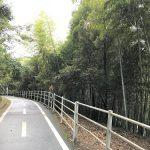 【長崎市をジョギング】野母崎サイクリングロード