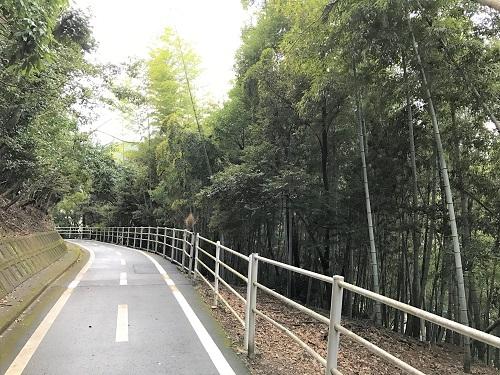 野母崎サイクリングロード