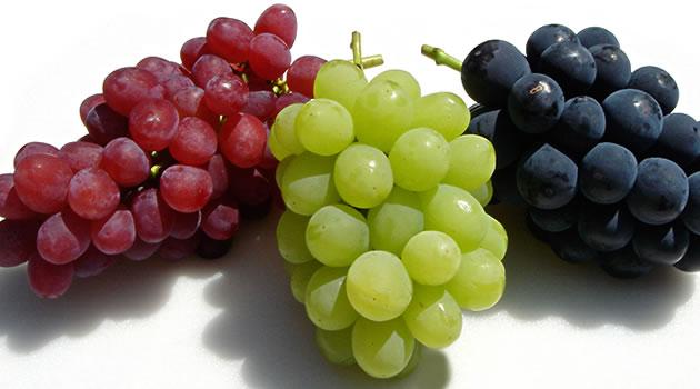 grape40